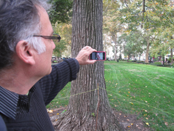 "New Paradise Laboratories artistic director Whit McLaughlin in Rittenhouse Square in Philadelphia looking at ""Act 2"" of Extremely Public Displays of Privacy on his iPod, starring Annie Enneking as the character Fess Eilliot"