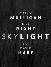 skylight logo