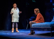 The Whirligign 5 Zosia-Mamet-Dolly-Wells